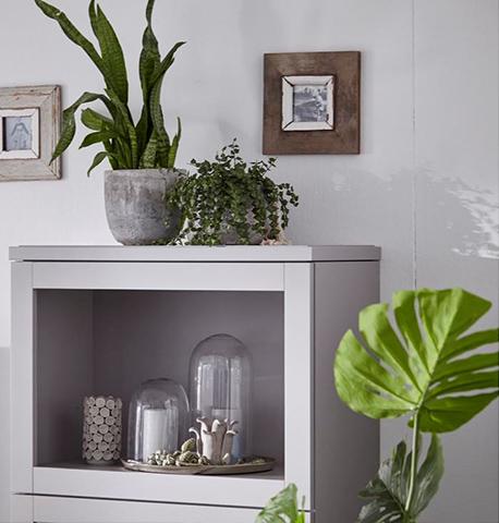 Graues Highboard mit Kerzen und verschiedenen Pflanzen