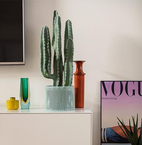 Deko-Kaktus und kleine Vasen auf einem weißen Sideboard
