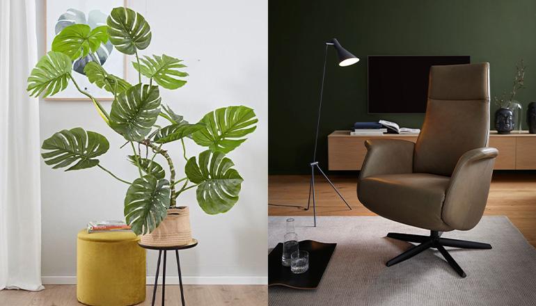 Grüne Pflanze neben dunkelgrünem Relaxsessel